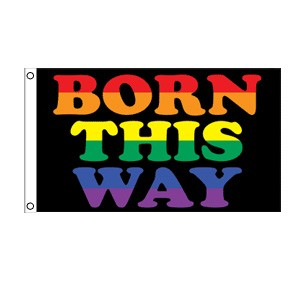 Rainbow Born This Way Flag 3' x 5'